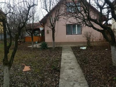 Casa cu curte proprie zona sigma